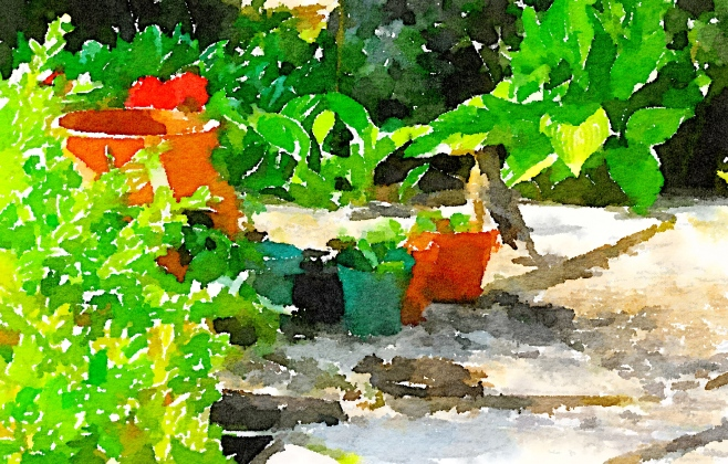 Waterlogue-2016-03-20-14-16-29