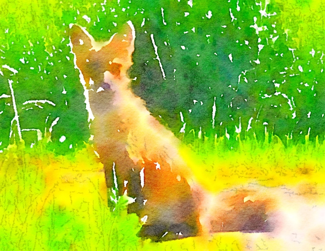 Waterlogue-2016-06-17-00-38-02